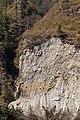 Recent landslide (4517858645).jpg