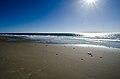 Refugio state beach.jpg