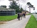 Returning to the yard, Whitsbury - geograph.org.uk - 1251093.jpg