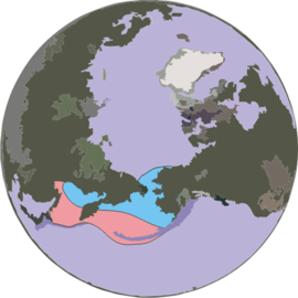 Ribbon-seal-range a.png
