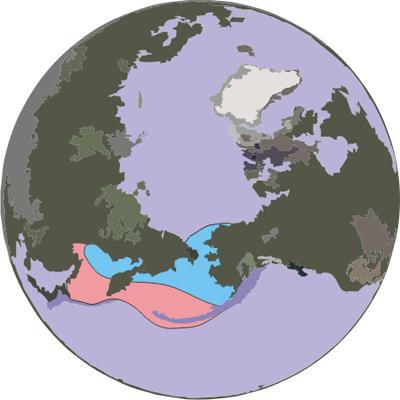 Ribbon-seal-range a