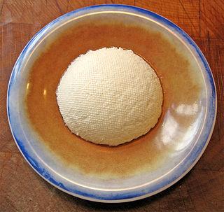 Ricotta Italian cheese