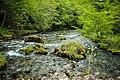 Rijeka Sana gornji tok 2.jpg