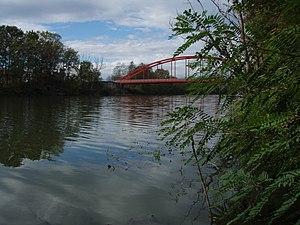 Spačva (river) - View of Spačva