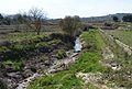 Riu d'Alcalà al costat del l'Atzuvieta.JPG