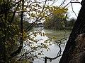River Medway near Little Preston - geograph.org.uk - 91877.jpg