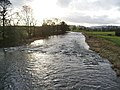 River Ribble - geograph.org.uk - 656623.jpg