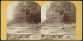 River bank, and part of High Fall, from Robert N. Dennis collection of stereoscopic views.png