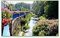 Rives fleuries et sauvages de la Doller à LAUW - panoramio.jpg