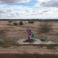Roadside memorial, Riggs Road.jpg