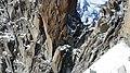 Rock Climbing in Winter (Unsplash).jpg