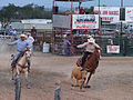 Rodeo, Texas, USA (14496689763).jpg