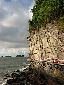 Route in cliff Cat Ba.JPG