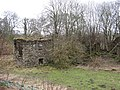 Ruin, Millhaugh - geograph.org.uk - 353859.jpg