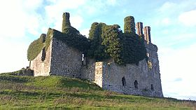 Ruins of Carbury, County Kildare.jpg