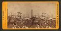 Rush of cotton, Union Wharf, by F. A. Nowell.png