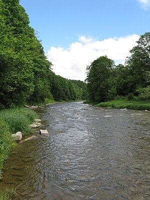 Wołosaty - Image: Rzeka Wolosaty