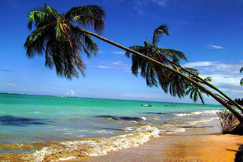 Roteiro de viagem em Alagoas