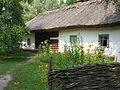 Sadyba tkacha in Pereyaslav Skansen IMG 2962 32-110-0034.JPG