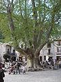 Saint-Guilhem-le-Désert22.JPG