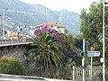 Saint-Jean-Cap-Ferrat, Provence-Alpes-Côte d'Azur, France - panoramio.jpg