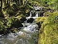 Saint-Mesmin, cascade sur le ruisseau de Porte-Étoupe.jpg