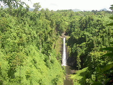 Samoa Sopoaga.jpg