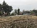 Samthar Plateau in Darjeeling 05.jpg