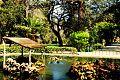 San Anton pond.jpg