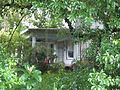 San Antonio FL Old Brown House01.jpg