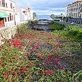 Santa Cruz, Madeira - 2013-01-11 - 86227541.jpg