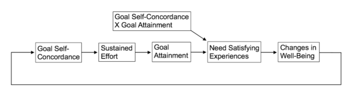 Motivation and emotion/Book/2018/Self-concordance theory and