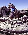 Selinunte-110-Tempel E-Touristin auf Kapitell-1986-gje.jpg