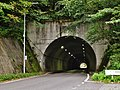 Semine Tunnel west.jpg
