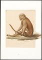 Semnopithecus pyrrhus - 1749-1842 - Print - Iconographia Zoologica - Special Collections University of Amsterdam - UBA01 IZA1000063.tif