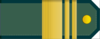 Senior Sergeant rank insignia (North Korean police).png