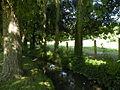 Seraincourt (Val-d'Oise) ruisseau 1.JPG