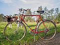 Seventies Batavus Champion Intercycle 10 speed.jpg