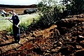 Shannonbrridge - Blackwater Bog tour - Cutting peat - geograph.org.uk - 1612203.jpg