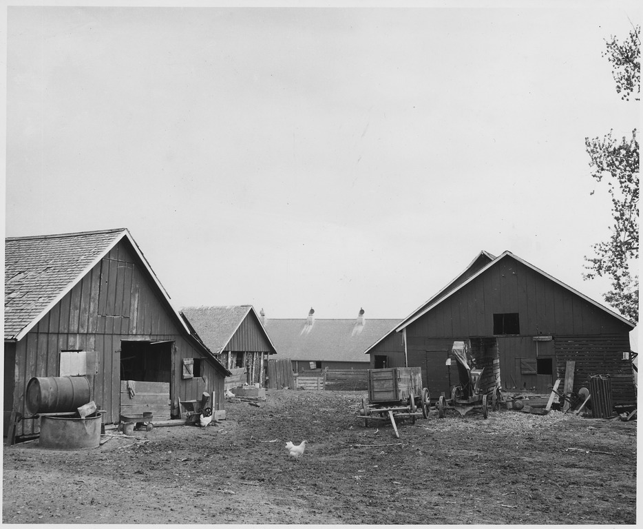 from a farm owner to a Search titles only has image posted today bundle duplicates include nearby areas abilene, tx (abi) austin, tx (aus) beaumont / port arthur (bpt.