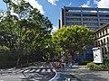 Shizuoka Prefectural Office (3).jpg