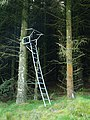 Shooters perch, Mid Rig - geograph.org.uk - 565833.jpg