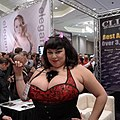 Show floor at AVN (8089903269).jpg
