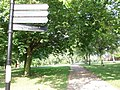 Sign posts in Finsbury Park - geograph.org.uk - 1470068.jpg