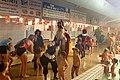 Sinterklaas in het zwembad (4148040573) (2).jpg