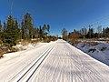 Skiing track Mustavuori-Lievestuore.jpg