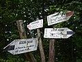Skrzyżowanie szlaków Stara Rzeka 2007.JPG