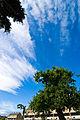 Sky appreciation (2212610826).jpg