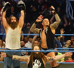 Smackdown Tag Team Champions The Wyatt Family.jpg