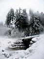 Snow cannons - panoramio.jpg